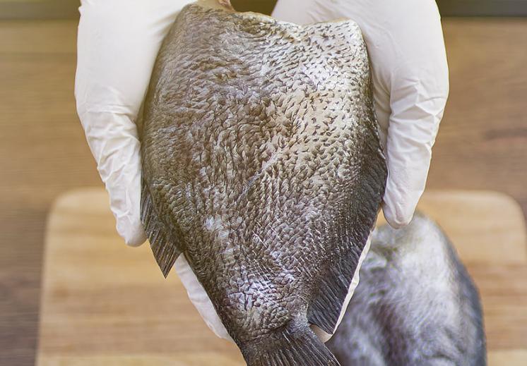 ปลาสลิดบางบ่อ ราคาถูก